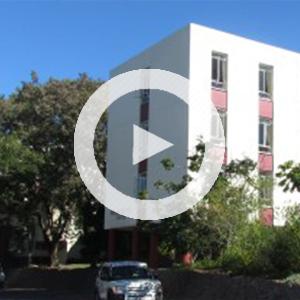 Huis Kalahari Visser play - Videos